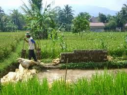 Macam Usaha Rumahan menguntungkan di Pedesaan