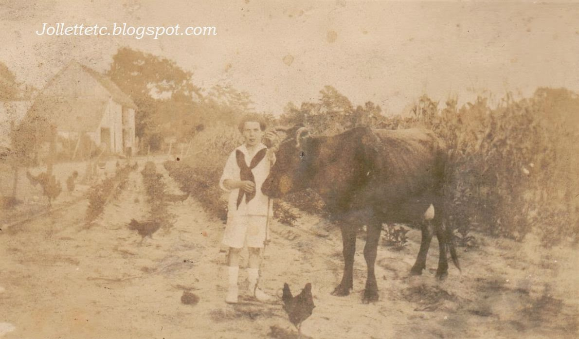Boy with cow in photo album of Herbert Webb Parker probably early 1900s