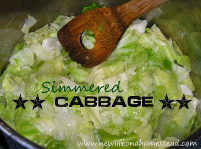 Simmered Cabbage
