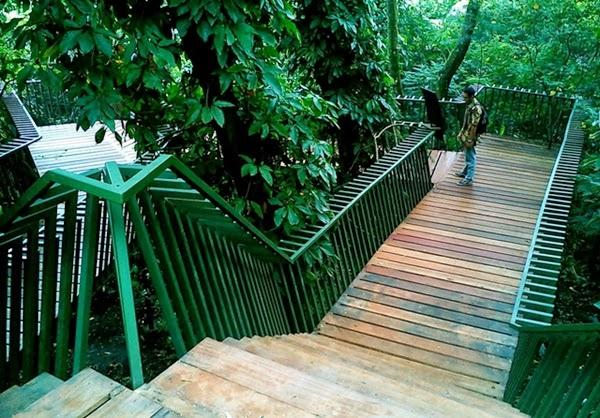 Babakan Siliwangi Tetap Difungsikan Sebagai Hutan Kota