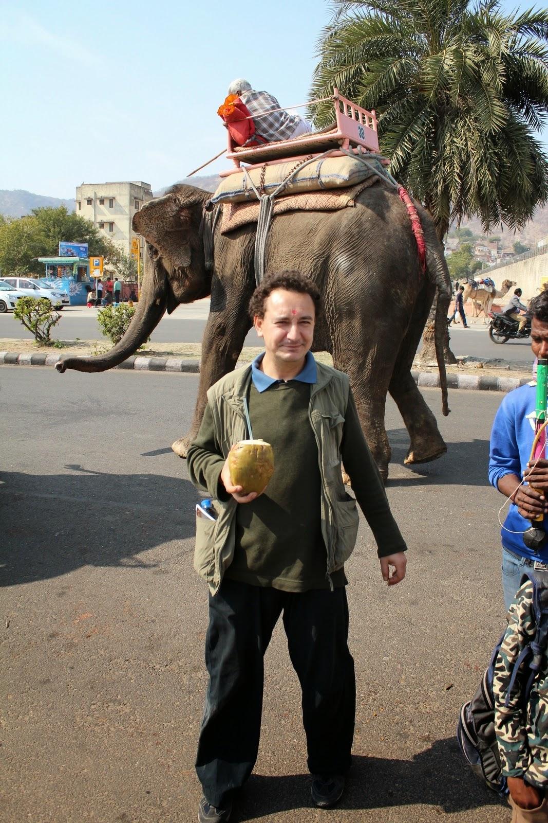 Szalai Vince, India