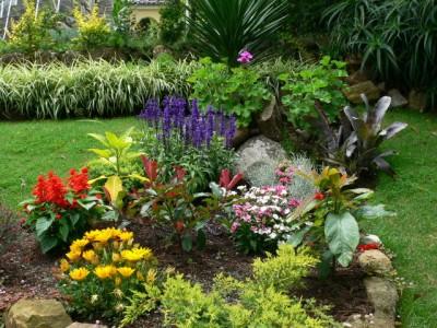 Flores bonitas flores de primavera en los jardines for Jardines en primavera fotos