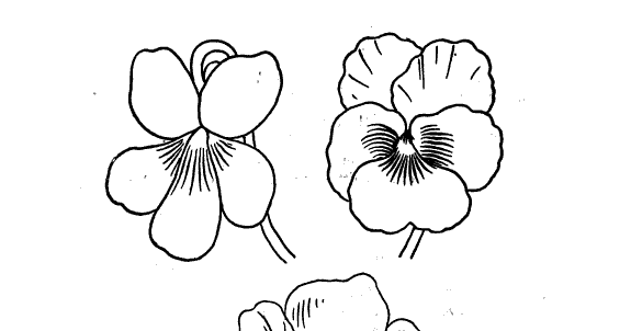 Coloring Pages For Upper Elementary Top Coloring Pages