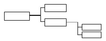 organigrama Horizontales