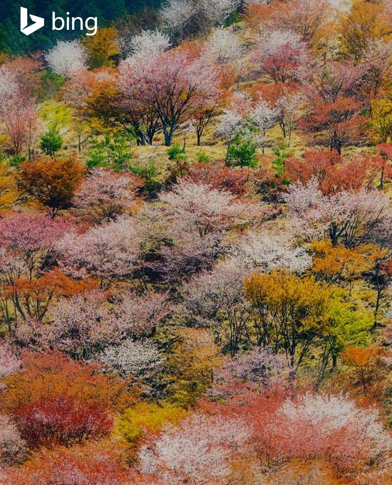 Kumpulan Gambar Pemandangan Alam Mempesona