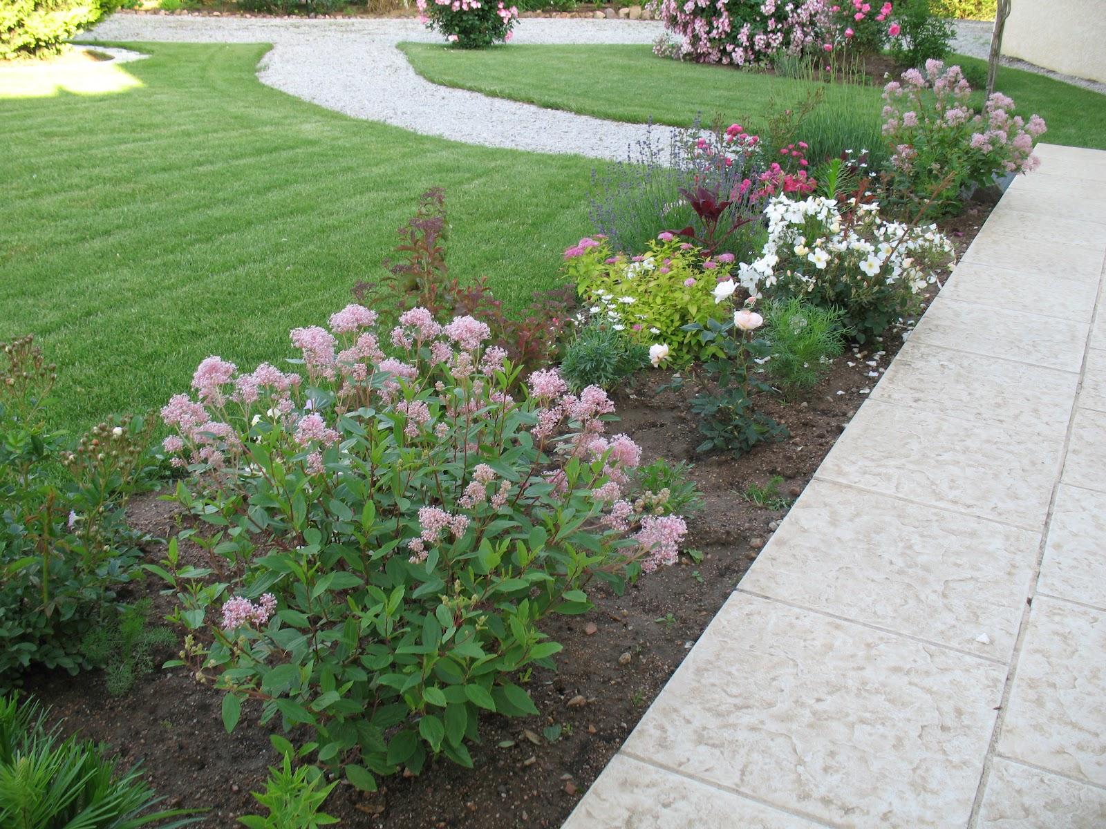 Roses du jardin ch neland cr ation d 39 une plate bande - Jardin sureleve creation ...