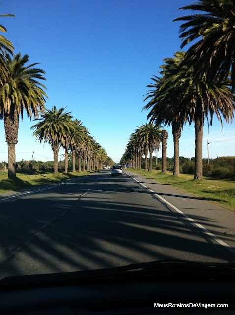 Ruta 1 - Colonia del Sacramento, Uruguai