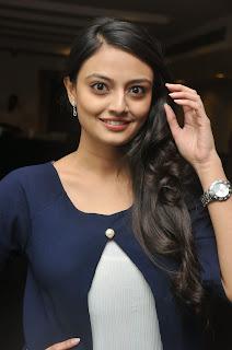 Nikitha Narayan Latest Stills (42).JPG