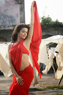 11Surveen Chawla in Spicy Transparent Red Saree and Bikini Must See Beauty HQ Pics