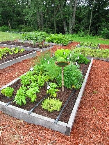 la otra opcin para crear el huerto es aprovechar las tablas de los palets unas jardineras grandes con las tablas que obtengis de los palets