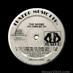 THE SKEME - You Turn Me On