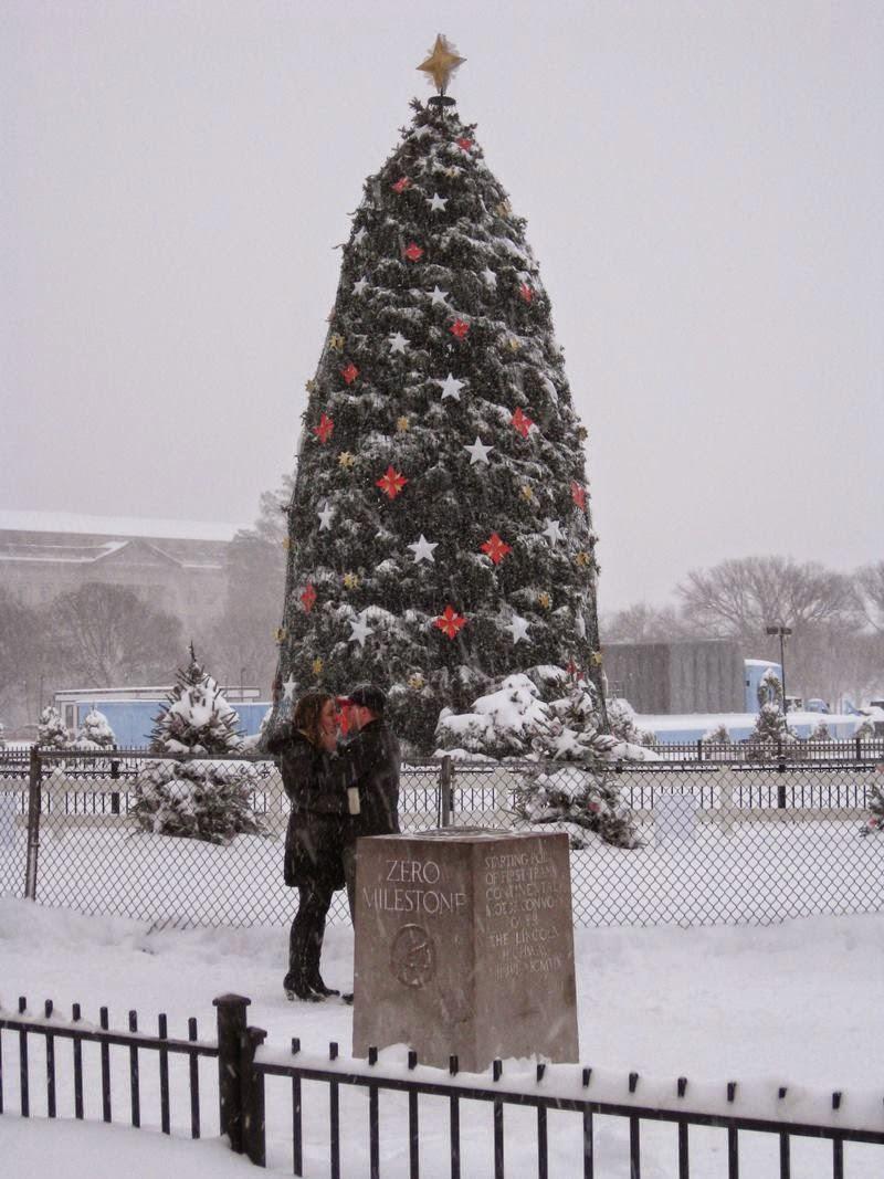 White House Christmas tree and zero milestone.