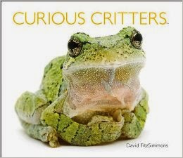 http://www.amazon.com/Curious-Critters-David-FitzSimmons/dp/1936607697
