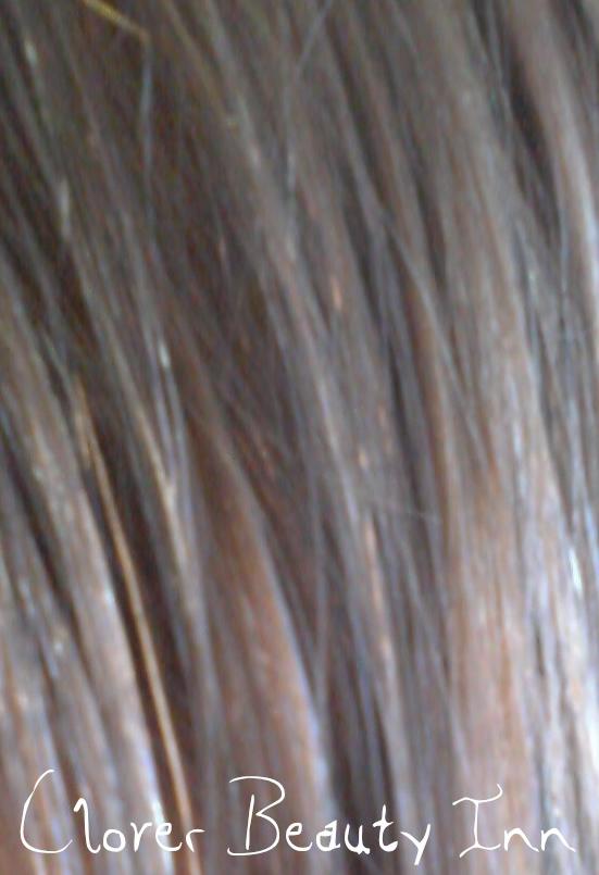 The Clover Beauty Inn Palty Haircolor Jewel Ash