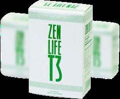 zen life t3