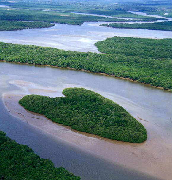 Srce kao prirodno čudo  Corazones_en_la_Naturaleza_13