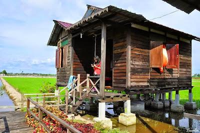 5 Homestay Menarik Yang Wajib Anda Kunjungi Untuk Bercuti Di Malaysia