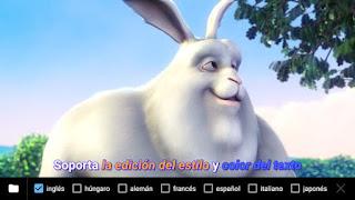 Reproductor MX APK admite muchos formatos de subtítulos y de videos