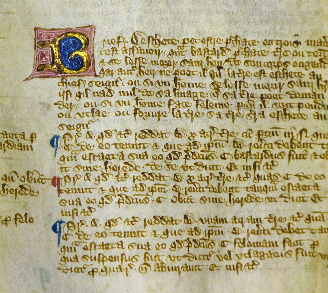New Copy of Magna Carta Discovered in Scapbook