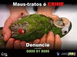 Denuncie crimes contra a fauna