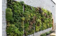 Amazing Vertical Garden