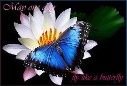......Like a butterfly......