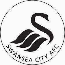 Swansea assassins creed
