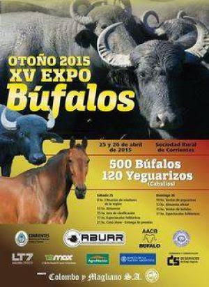 XV Expo Búfalos