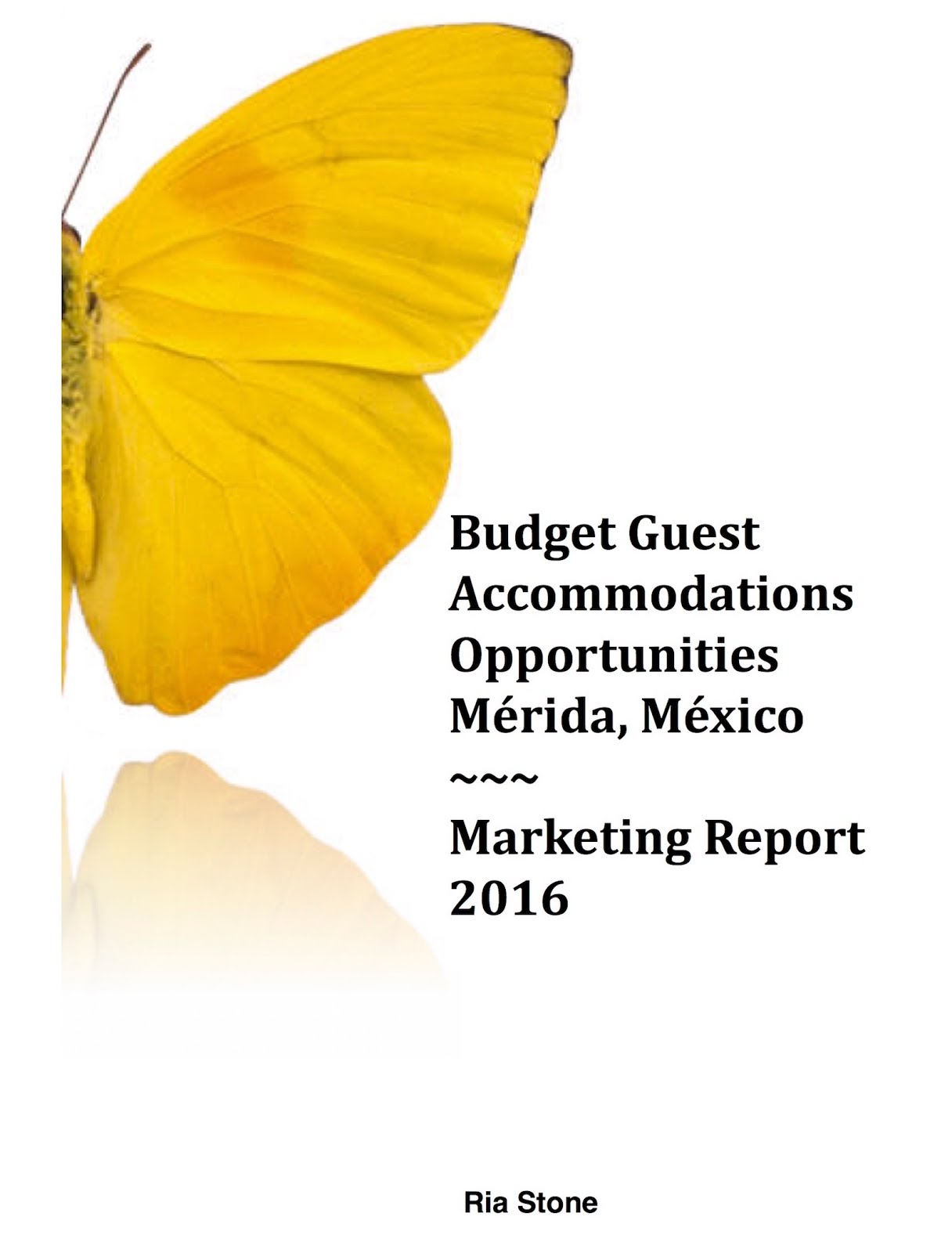Preorder: Budget Guest Accommodations Opportunities Marketing Report, Mérida, México