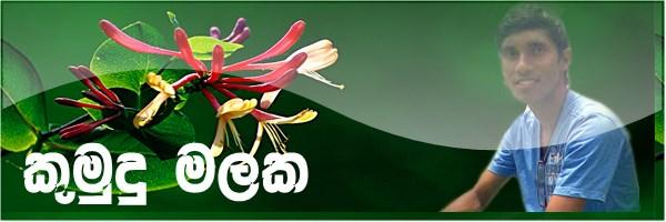 http://2.bp.blogspot.com/-L0lf2NcIyAg/UO6KvlH0auI/AAAAAAAAH2A/-WVZYPL_mfw/s1600/kumudu+malaka.jpg