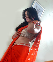 hot,sexy, Lakshmi Rai, navel show, backless blouse saree,
