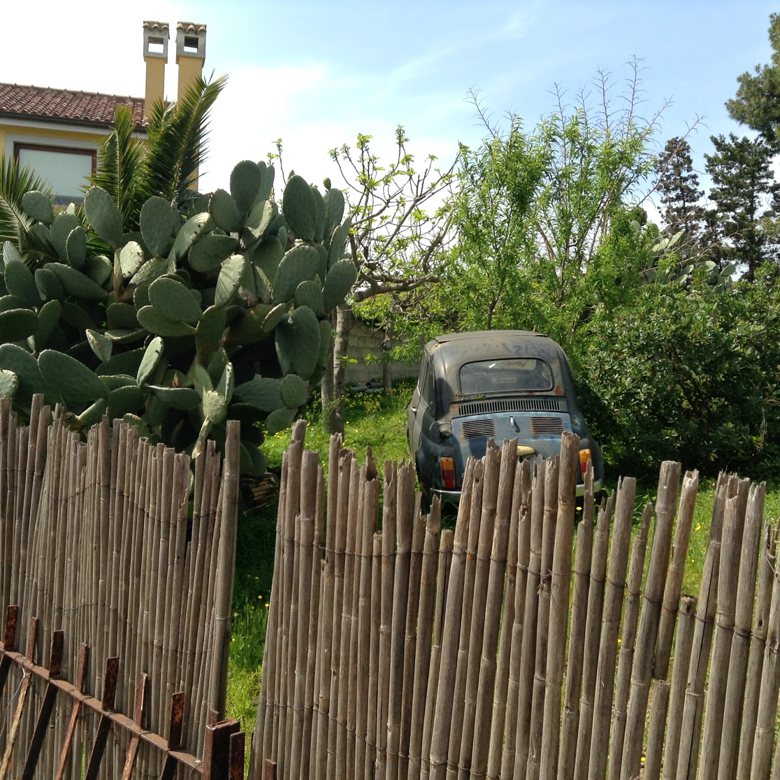 Old Fiat 500, Opuntia, & Reed fence in Barraccamanna, Sardinia
