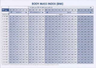 Free bmi chart download