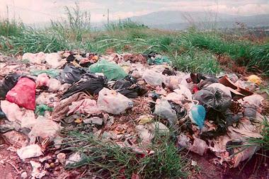 Contaminación de Basuras
