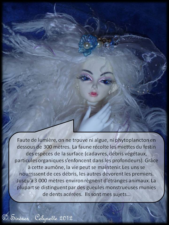 (C)arnets 2 Voyages: Neptune p29/Baby-Lancer St Valentin p30 - Page 2 Diapositive11