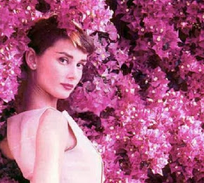 25 años sin Audrey Hepburn: 20 de enero