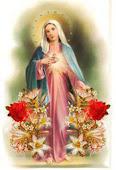 Vergine Immacolata Proteggici