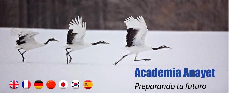 Academia Anayet - Formación