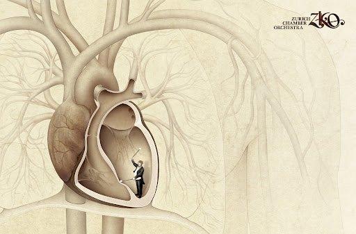 mesure fréquence cardiaque ecg
