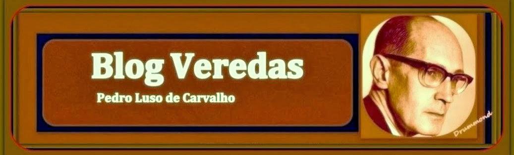 blog VEREDAS
