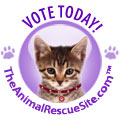 Vote for a Shelter