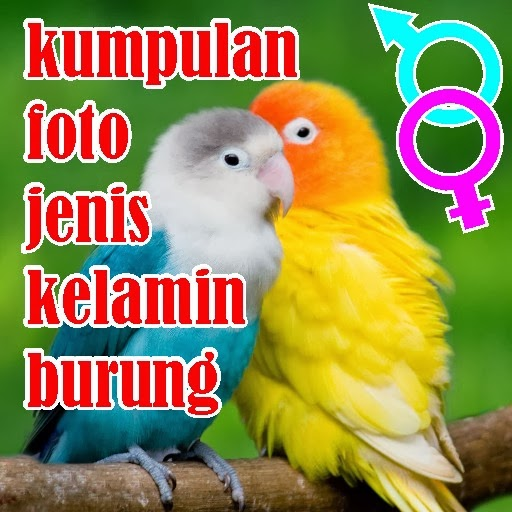 http://ilmukicau.blogspot.com/p/blog-page_28.html