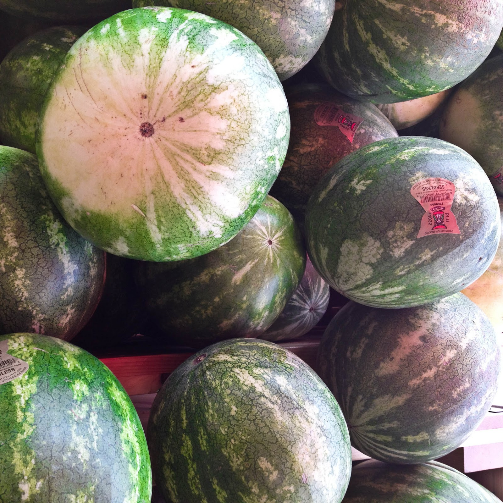 Reflections on a gift of watermelon pickle analysis