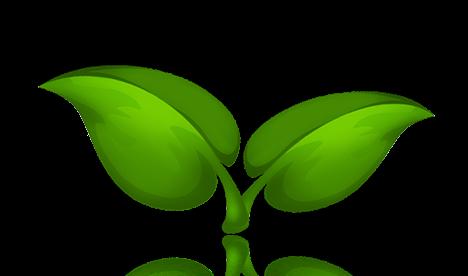 Renders Plantas Variadas | D-Efeitos Design: defeitosdesign.blogspot.com/2013/04/renders-plantas-variadas.html