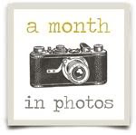 a month in photos