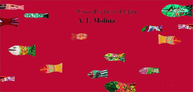 Cartel fondo rojo con peces