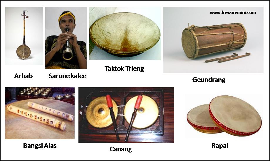 Alat musik tradisonal Aceh