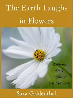 http://www.amazon.com/Earth-Laughs-Flowers-flower-meditations-ebook/dp/B00H1UI5TA/ref=la_B00BCUD1ZS_1_2?s=books&ie=UTF8&qid=1386461999&sr=1-2