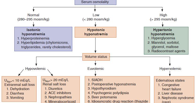medicine pakistan: hyponatremia - etiology, Skeleton