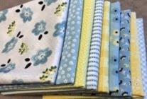 January mystery fabric